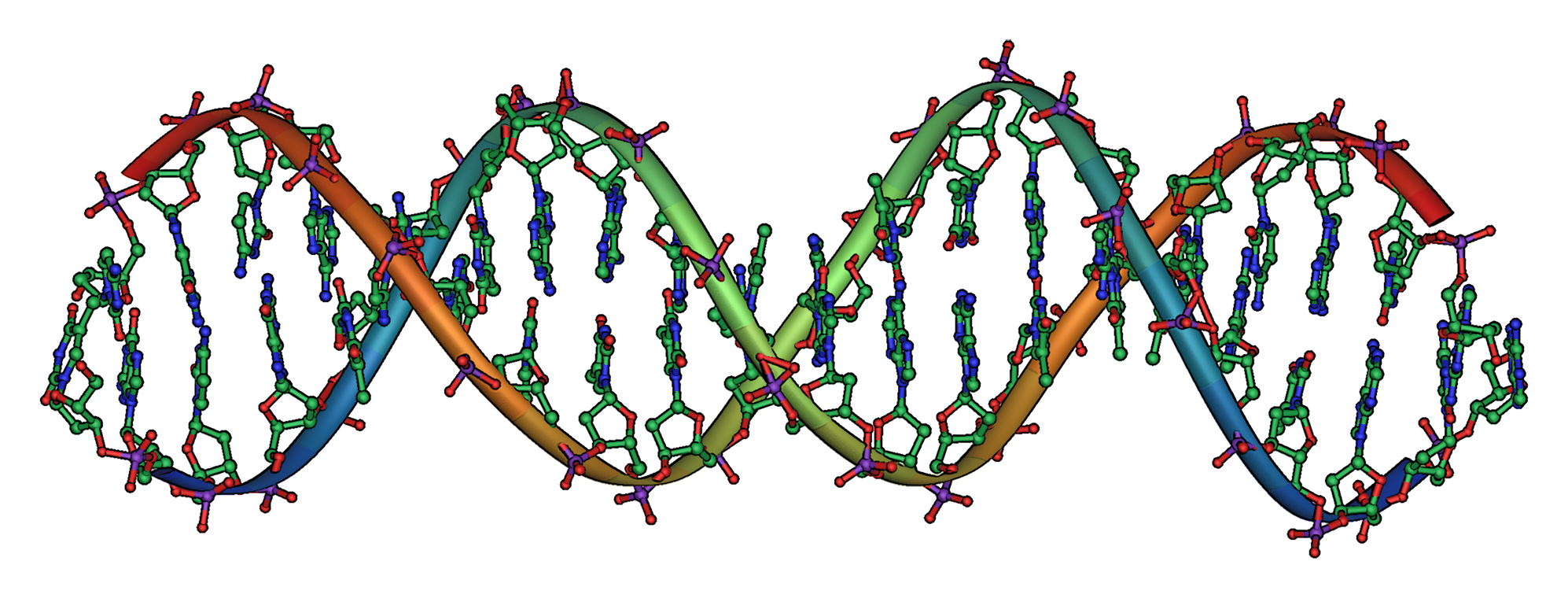 DNA_Overview_landscape_orientation