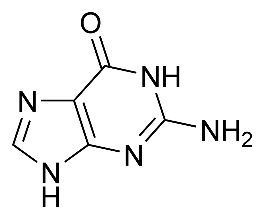 1024px-Guanine_chemical_structure