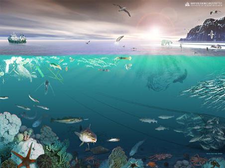 Έννοια του οικοσυστήματος